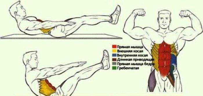 Быстро накачать мышцы и похудеть