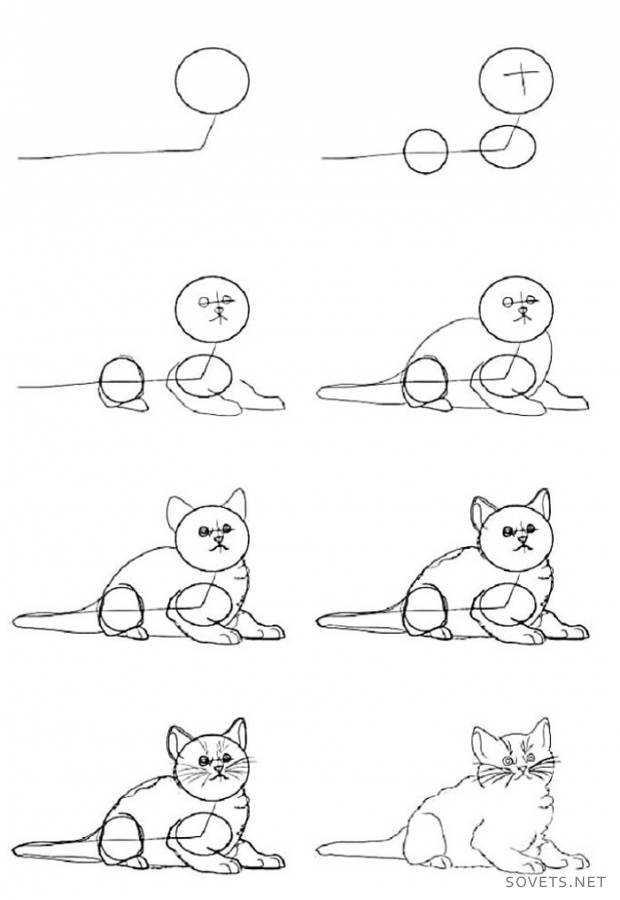 Как нарисовать кошку своими руками 66